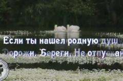 Lebedinaya-vernost-300x159
