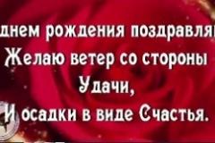 Rozy-v-fevrale-300x166