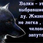 Олег Винник — Волчица