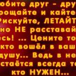 Фиалка алая