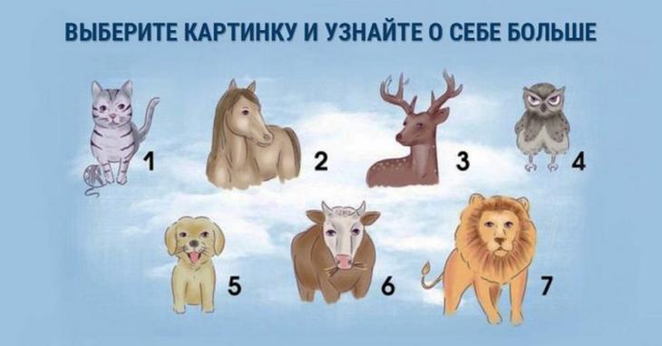 Выберите животное и узнай свою самую яркую черту характера