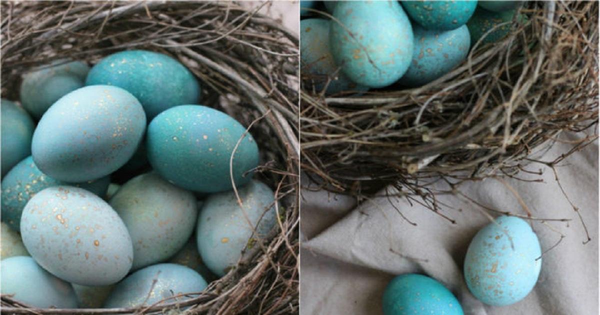 Сказочная краска для яиц:  не догадаешься из чего сделан этот краситель!