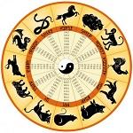 Что ваш китайский знак зодиака действительно говорит о вашей личности?