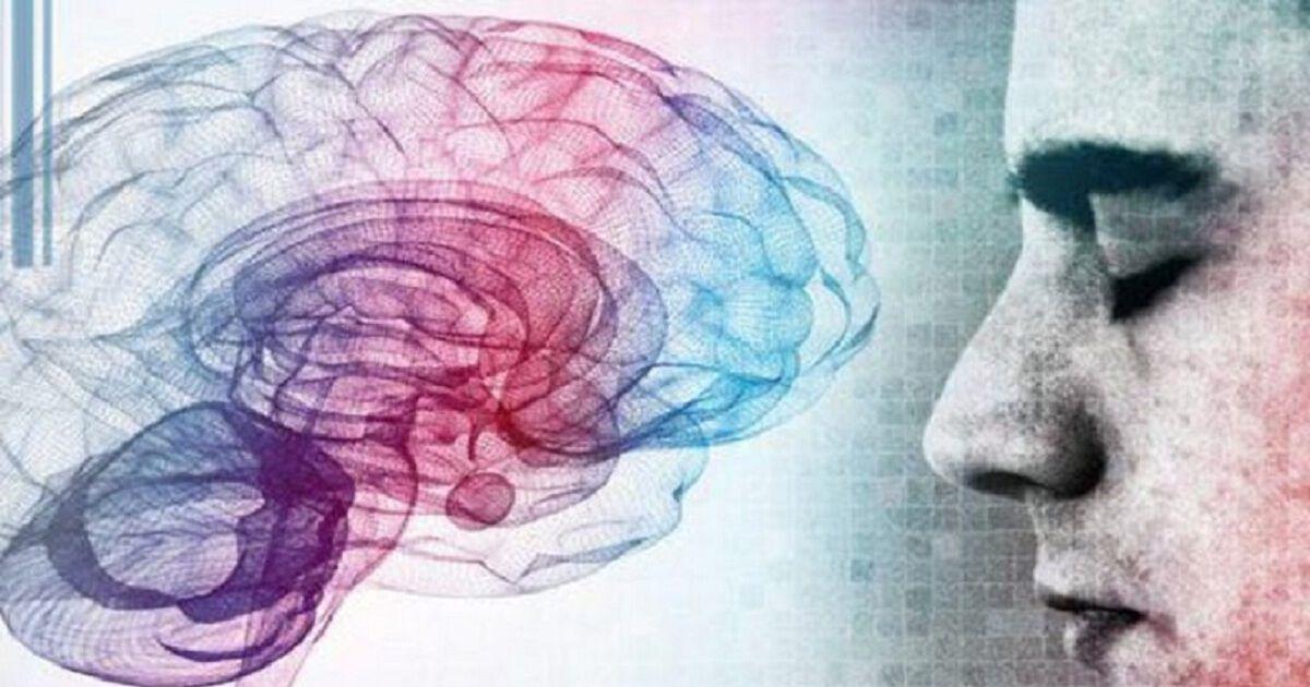 Вот как сон очищает мозг от токсинов, предотвращая болезнь Альцгеймера